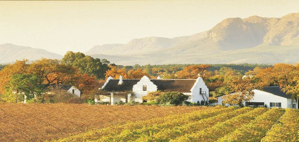 WineFarm featured - Guaranteed Departures in Africa